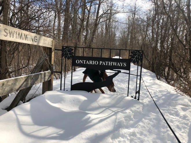 Rosie suggère un nouveau design pour le panneau Ontario Pathways Rail Trail.