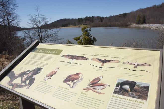 Un grand panneau d'affichage aide les visiteurs à identifier la variété de grands oiseaux qui passent au-dessus du parc d'État de Keystone.