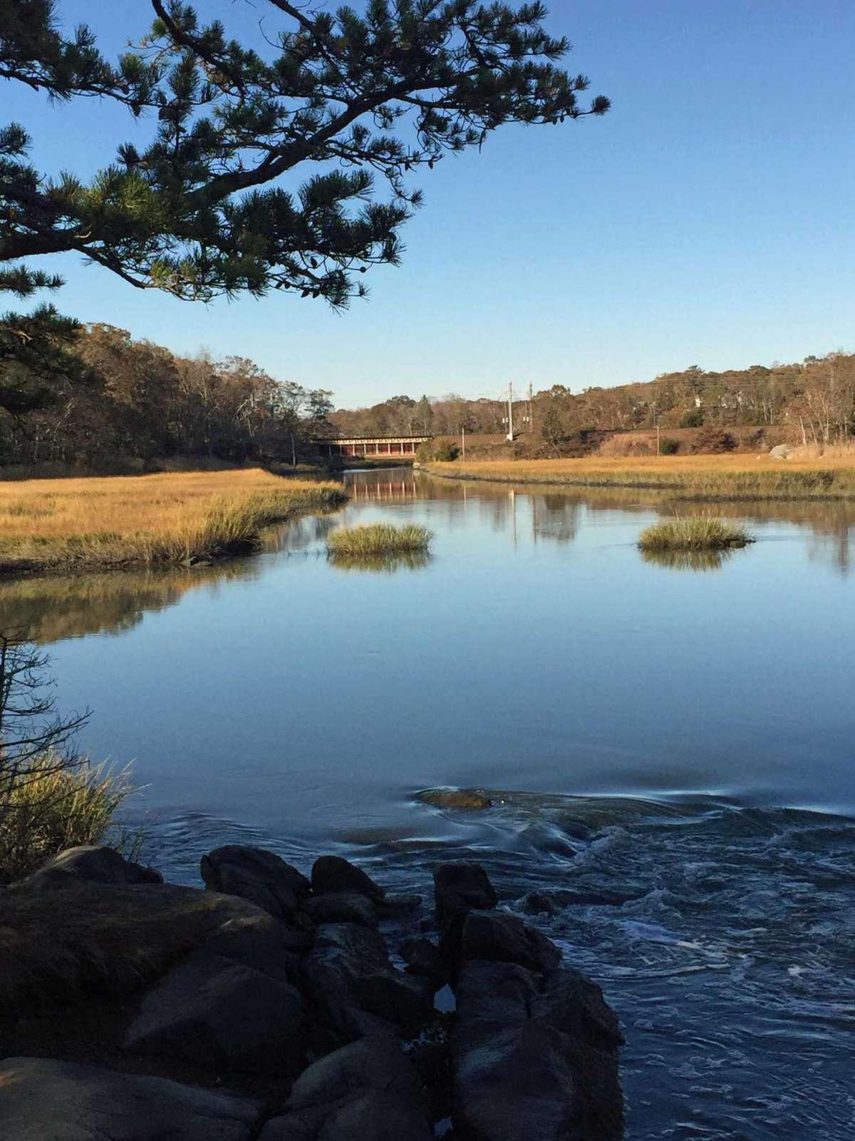 Ils ont trouvé l'une de leurs randonnées préférées près de chez eux, à Washburn Preserve à Stony Creek.