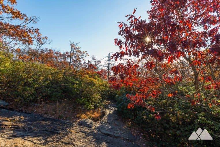 Blood Mountain Loop: parcourez le sentier des Appalaches à travers une forêt rocheuse remplie de rhododendrons jusqu'au plus haut sommet de l'AT en Géorgie