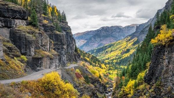 Couleurs d'automne sur Camp Bird Road à Ouray, Colorado
