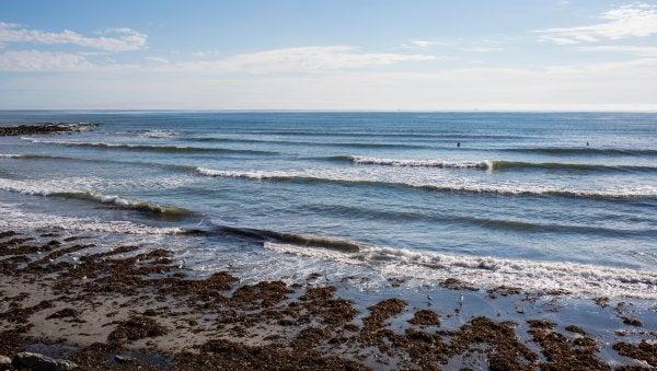 Tous droits, plages, Nick Cote, surf, les plages du Maine, York
