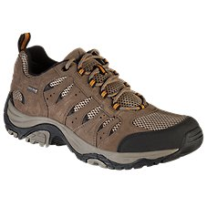 Chaussures de randonnée imperméables Ascend Lisco Low pour homme